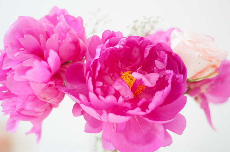 Are Peonies National Flowers in China?